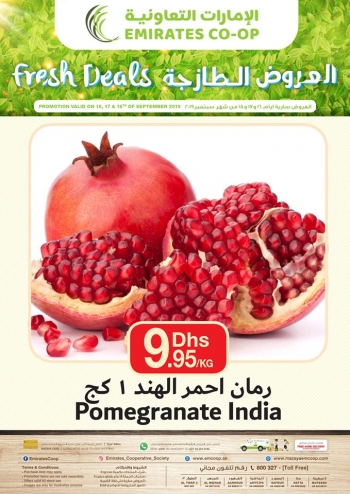 Emirates Co-operative Society Emirates Co-operative Society Fresh Deals
